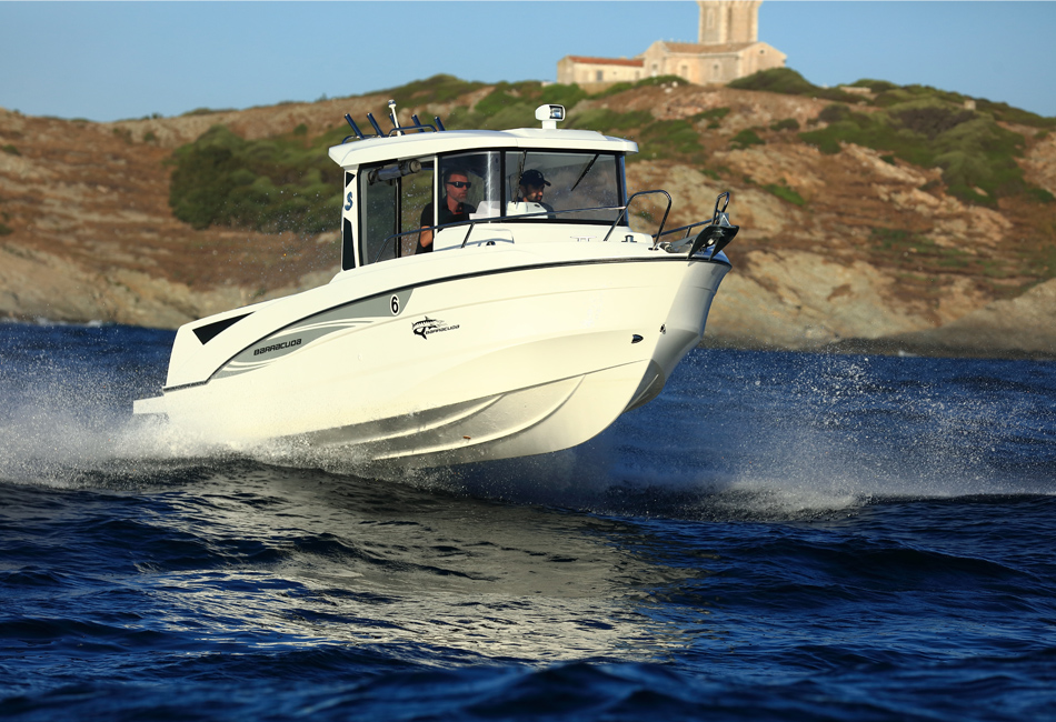 Barracuda 6-5